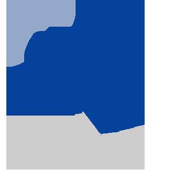 icon person waving flag